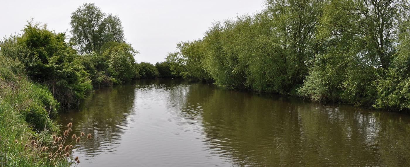 Blunham River Ouse