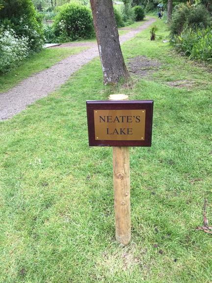 Neate's Lake